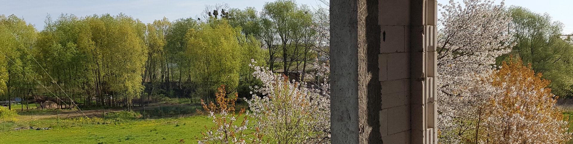 Wiosna w Osadzie Borkowo